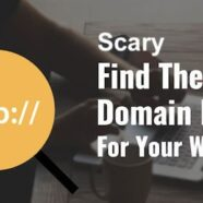 Domain Names 101, DIY Widow