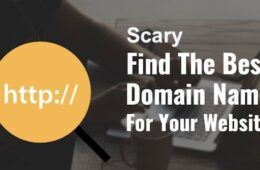 Domain Names 101, DIY Widow