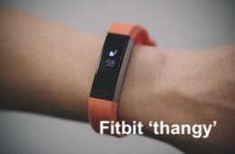 Fitbit and Me, DIY Widow's Blog